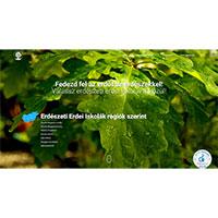 Erdészeti Erdei Iskolák